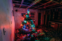 Christmas Tree in Abandoned Home Project 2019 - 6
